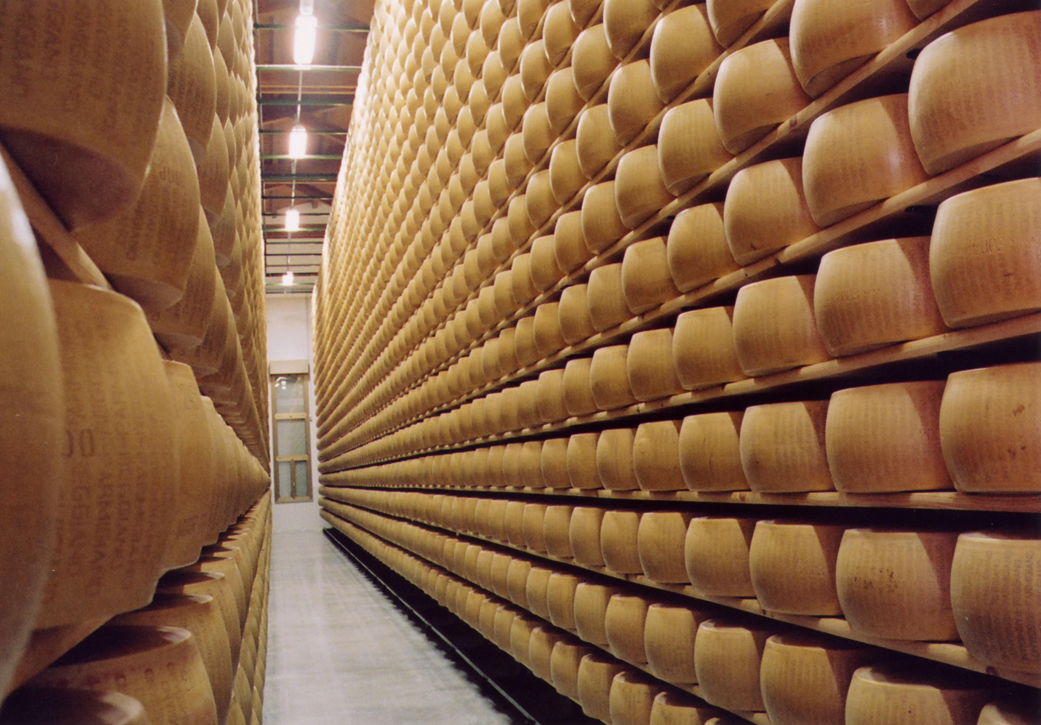 Parmigiano-Reggiano-forme-in-stagionatura
